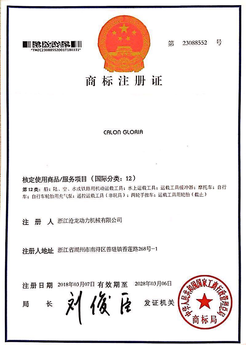 Сертификат на товарный знак двенадцатого класса